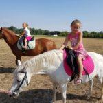 Výlet pro deti - kůň